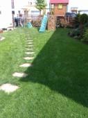 Zeleneč po péči o trávník